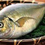 نرخ ماهی کفال